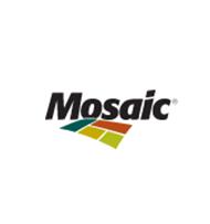mosaic400